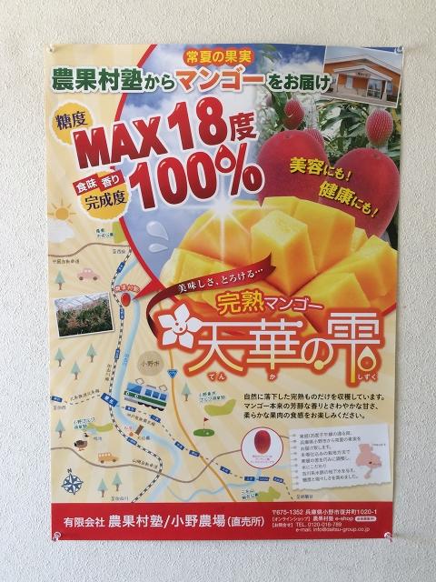 マンゴー販売施設!4
