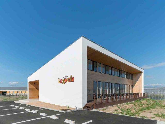 マンゴー販売施設「La goccia」の竣工写真(外観)3